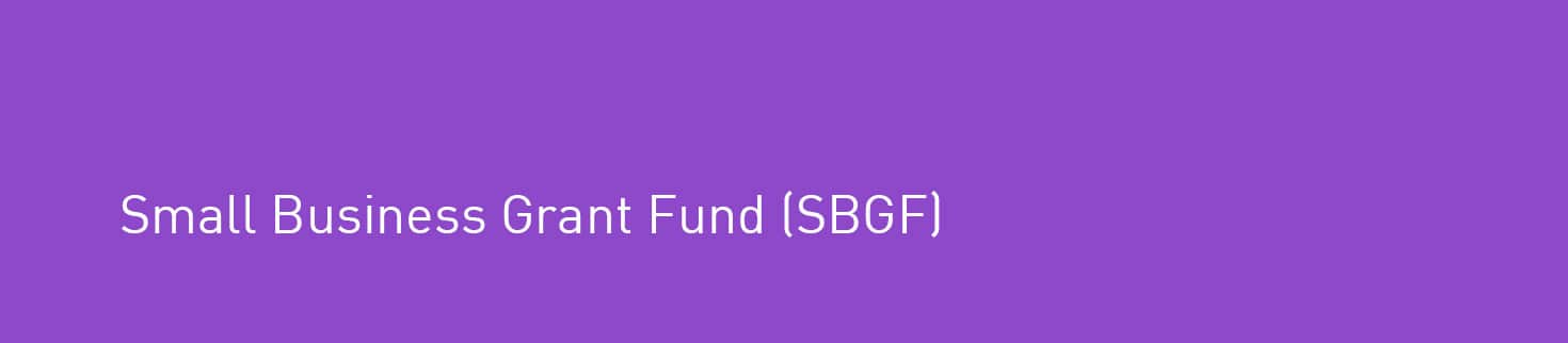 Small Business Grant Fund (SBGF)